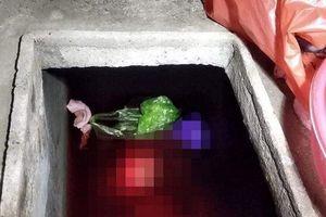 Thái Bình: Con rể sát hại mẹ vợ, phi tang xác xuống bể nước mưa