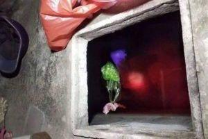 Nghi phạm sát hại mẹ vợ rồi vứt xác vào bể nước phi tang khai gì?
