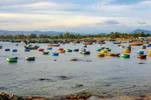 Ninh Thuận công bố kế hoạch đón 3,5 triệu lượt khách năm 2025