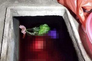 Thái Bình: Sát hại mẹ vợ rồi phi tang xuống bể nước
