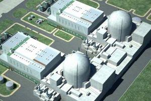 Dừng điện hạt nhân Ninh Thuận: Đối tác thông cảm