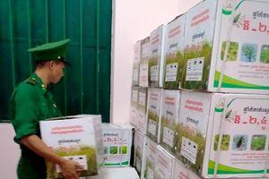 Bắt giữ thuyền máy chở số lượng lớn thuốc bảo vệ thực vật nhập lậu từ Campuchia