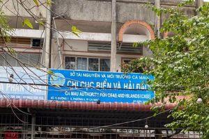 Nữ phó phòng đi du học xin nghỉ, tỉnh Cà Mau vận động về nước