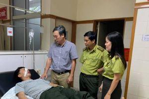 Huế: Cán bộ bảo vệ rừng bị gã đặt bẫy xông vào trụ sở đánh trọng thương