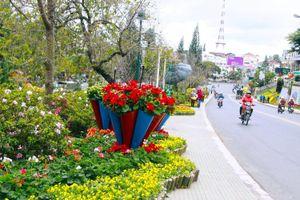Sắp diễn ra Festival Hoa Đà Lạt 2019