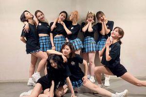 Twice cán mốc lượng sale album tiếng Nhật 'khủng', thống trị 2 BXH âm nhạc hàng đầu xứ hoa Anh Đào