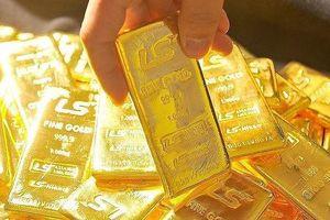 Giá vàng hôm nay 23/11: Cuối tuần giá vàng lao dốc không phanh