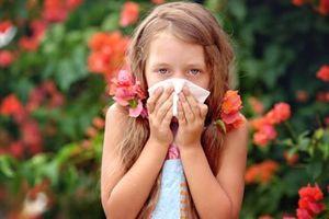 Dấu hiệu cho thấy trẻ bị viêm mũi dị ứng mẹ cần cảnh giác