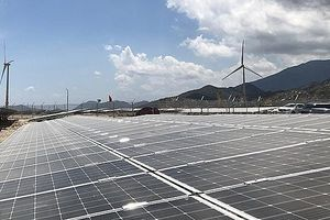 Quy hoạch, phát triển năng lượng tái tạo: Bộ Công Thương lắng nghe với tinh thần cầu thị