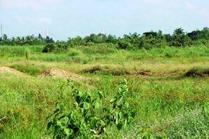 Đã có quy định chi tiết về hành vi hủy hoại đất đai