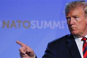 NATO có thể 'mất cả não'