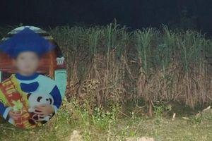 Mẹ kế sát hại, phi tang thi thể con chồng: 'Tôi biết tôi sai rồi'