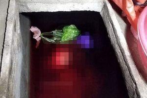Vụ con rể sát hại mẹ vợ ở Thái Bình: Khởi tố, tạm giam bị can Vũ Đức Bộ
