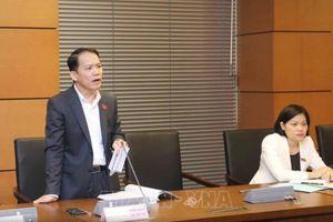 Ông Hoàng Thanh Tùng được bầu làm Chủ nhiệm Ủy ban Pháp luật Quốc hội