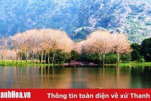 Kim Sơn non nước hữu tình