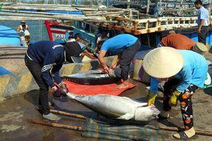 Cấp chứng thư mới cho các lô hàng thủy sản xuất khẩu sang EU