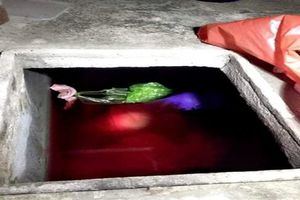 Khởi tố, bắt tạm giam kẻ sát hại mẹ vợ rồi phi tang xác vào bể nước ở Thái Bình