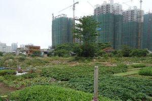 TP.HCM điều chỉnh giá đất nhiều dự án