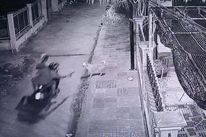 Bị vây bắt, hai kẻ trộm chó bỏ của chạy lấy người