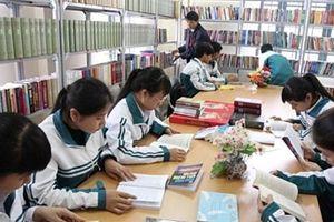 100% các trường tiểu học đã có thư viện: Sao cho hoạt động thực sự hiệu quả?