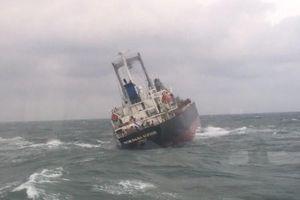 Việt Nam cứu 18 thuyền viên Thái Lan gặp nạn ở cảng Sơn Dương
