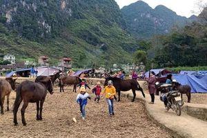 Cao Bằng: Sơ tán 334 hộ dân ra khỏi vùng ảnh hưởng bởi động đất