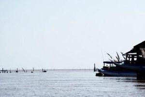 Cà Mau ban bố tình huống khẩn cấp sạt lở bờ biển Đông đoạn từ Đất Mũi đến Vàm Xoáy