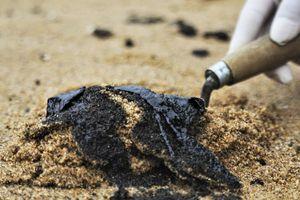 Cặn dầu loang lổ suốt 3 km bờ biển