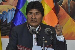 Chính phủ lâm thời Bolivia yêu cầu Tòa án Hình sự Quốc tế điều tra cựu Tổng thống Morales