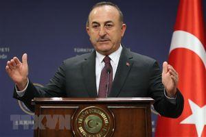 'Thổ Nhĩ Kỳ sẵn sàng cùng NATO chống lại Nga nếu cần thiết'
