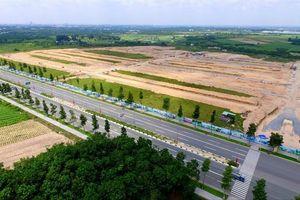 'Cơn bão' bán rẻ 200 ha đất công chưa tan, Chủ tịch Protrade không được từ nhiệm