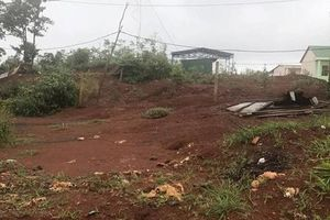 Truy tố nhóm cấp đất công cho lãnh đạo huyện