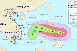 Ảnh hưởng của bão Kammuri, lịch thi đấu nhiều môn bị xáo trộn