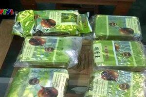 Sau Huế, người dân Quảng Trị phát hiện ma túy dạt vào bờ biển