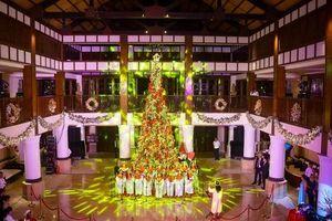 Thắp sáng cây thông Noel cao 10 mét tại khu nghỉ mát ở Đà Nẵng