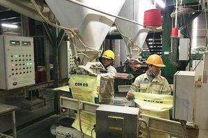 Sản xuất thức ăn chăn nuôi: Doanh nghiệp nội yếu thế