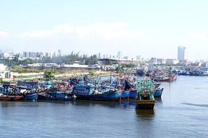 Gửi công hàm đề nghị các nước hỗ trợ tàu thuyền Việt Nam tránh trú bão số 7