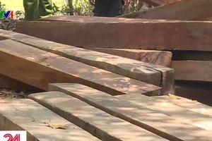 Phát hiện nhiều điểm tập kết gỗ ở rừng đặc dụng Nam Kar, Đắk Lắk