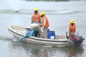 Khi nào Hà Nội công bố kết luận thanh tra chế phẩm Redoxy 3C làm sạch ao, hồ?