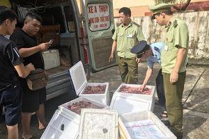 Quyết liệt 'chặn' thịt lợn nhập lậu