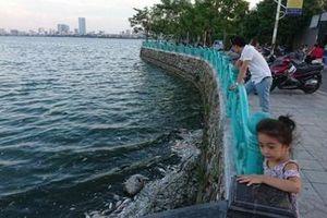 Hà Nội: Sắp công bố kết luận thanh tra về sử dụng chế phẩm Redoxy-3C làm sạch hồ