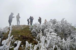 Bắc Bộ có nơi dưới 7 độ C, bão số 7 giật cấp 14 tiến sâu vào Biển Đông