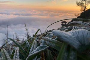 Miền núi có thể rét 0 độ