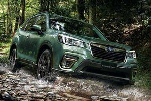 Subaru tung bản đặc biệt Forester X-Edition cho khách hàng thích 'băng rừng lội suối'