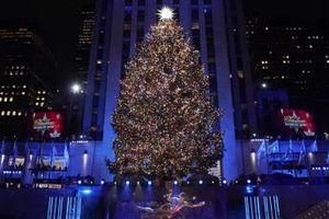 New York thắp sáng cây thông khổng lồ chào đón mùa Giáng sinh