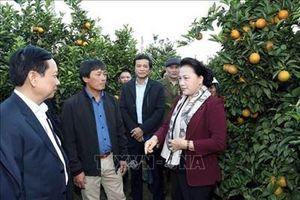 Chủ tịch Quốc hội Nguyễn Thị Kim Ngân dự khai mạc Tuần Văn hóa, du lịch tỉnh Hòa Bình