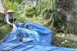Vĩnh Long: Tình trạng sạt lở bờ sông ngày càng phức tạp