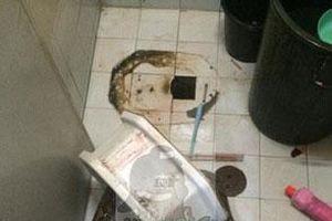 'Khóc thét' vì bị trăn cắn trộm 'của quý' khi đi vệ sinh