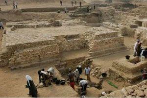 Phát hiện hiếm thấy xác ướp của một loài thú lớn tại Ai Cập