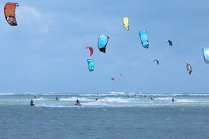 Khoáng đạt Festival lướt ván thả diều trên biển